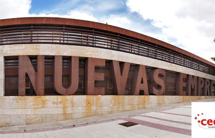 157 emprendedores y pymes se forman, asesoran e informan en el mes de junio con el CEEI Guadalajara