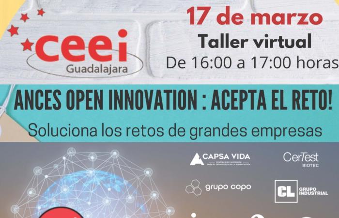TALLER VIRTUAL ANCES OPEN INNOVATION : ACEPTA EL RETO!¨
