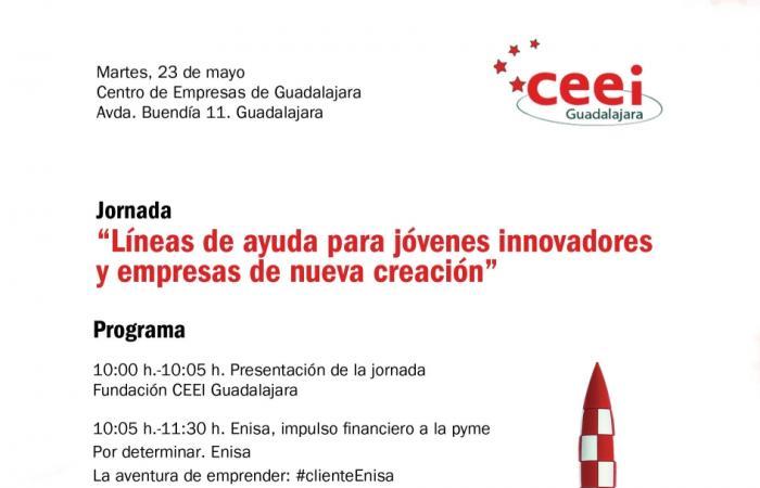 Líneas de ayuda para jóvenes innovadores y empresas de nueva creación¨