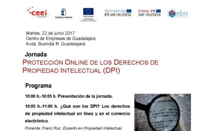 Jornada propiedad online de los derechos de propiedad intelectual (DPI)¨