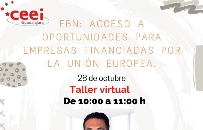 TALLER VIRTUAL EBN: ACCESO A OPORTUNIDADES PARA EMPRESAS  FINANCIADAS POR LA UNIÓN EUROPEA¨